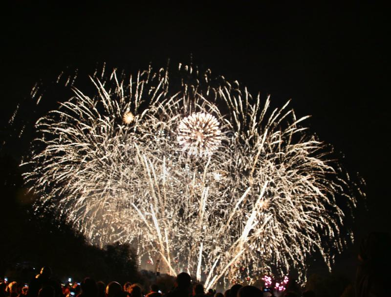 A view of a Firework Display royalty free stock photo