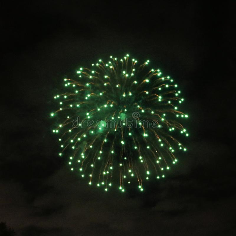 A view of a Firework Display royalty free stock image