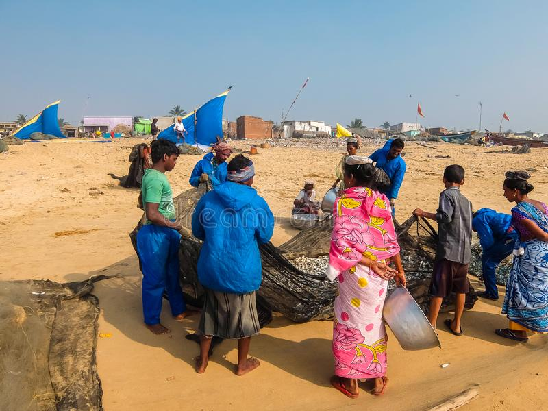 View of fishermen with nets full of fish on the beach in Puri. stock image