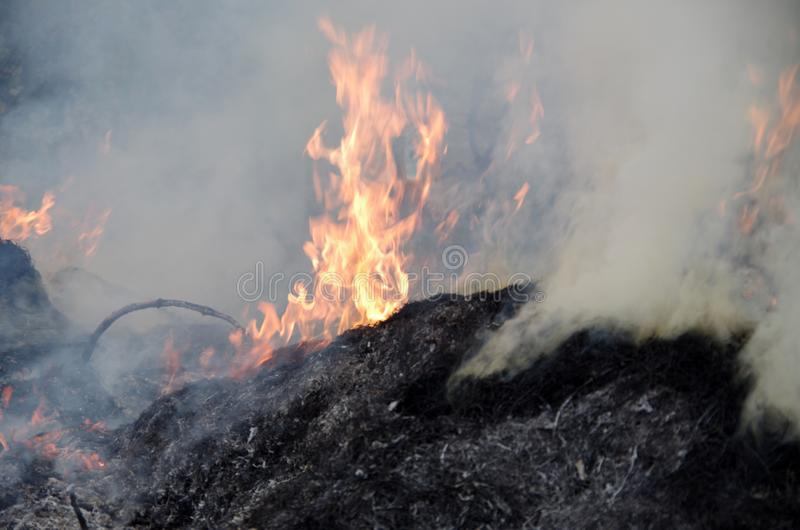 view of flames, smoke and ashes. stock photos