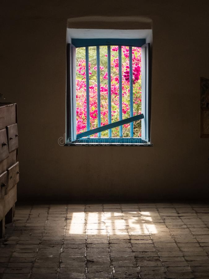 View of flowers through barred window in dark room. stock photos