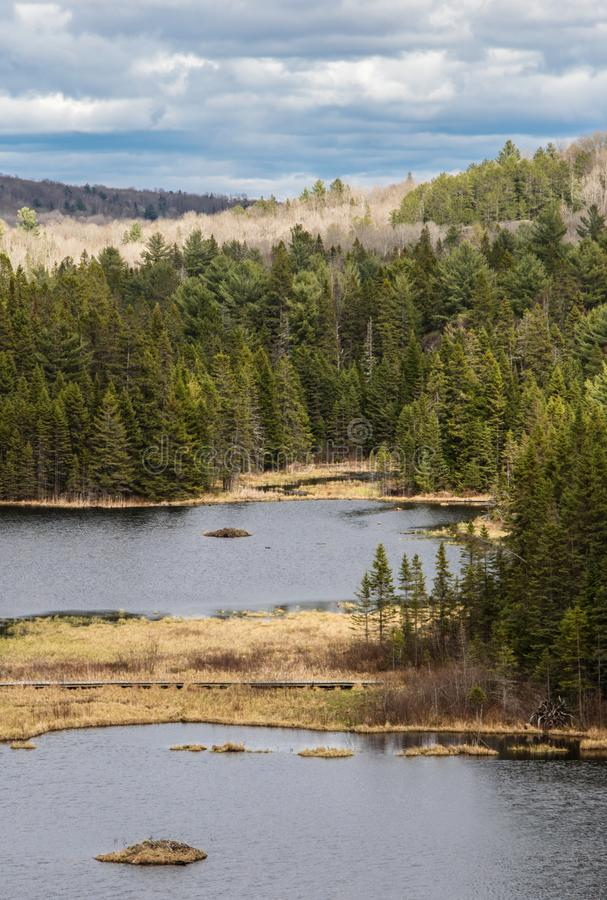 View of Beaver Pond under beautiful stormy Fall Sky stock photo
