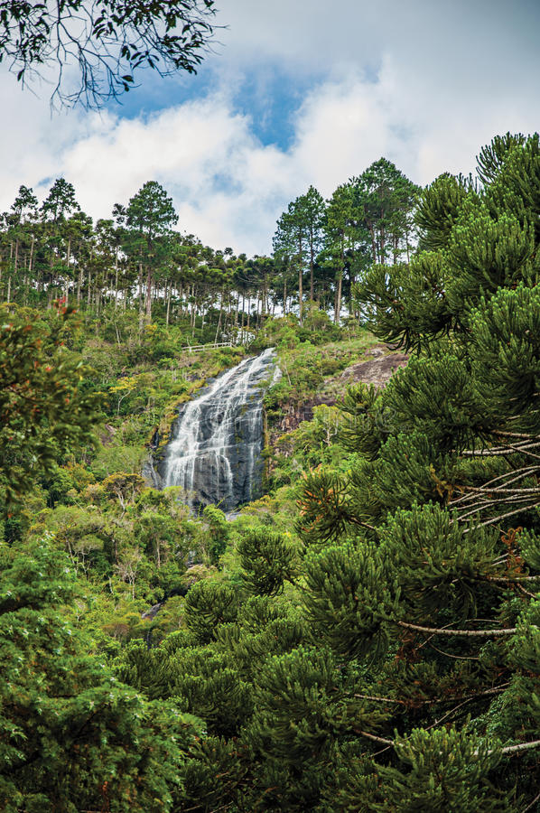 View of forest with waterfall and cliffs in a cloudy day near, Campos de Jordão. royalty free stock photo