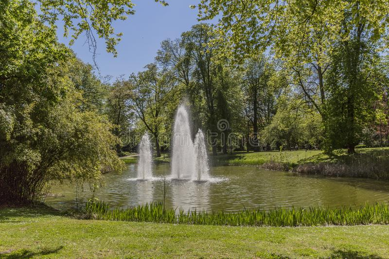 View of a fountain in the middle of an artificial lake in a park royalty free stock photos
