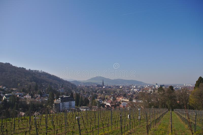 View of Freiburg im Breisgau from a vineyard royalty free stock photos