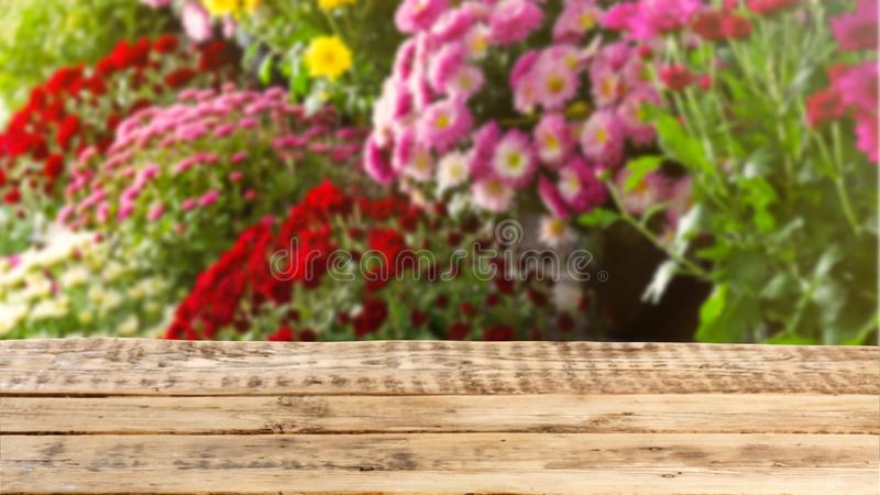 View of fresh beautiful colorful flowers stock images