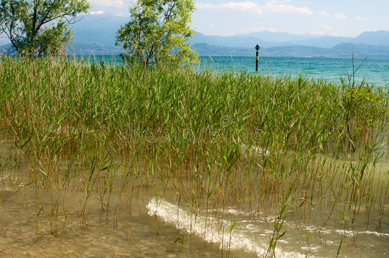 View of Garda lake. View of the Garda lake Sirmione, Brescia, Italy. This picture was taken on May 25, 2014 stock images