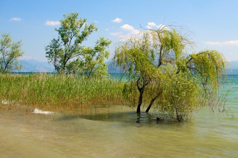 View of Garda lake. Sirmione Brescia, Italy. Taken on May 25, 2014 stock photo