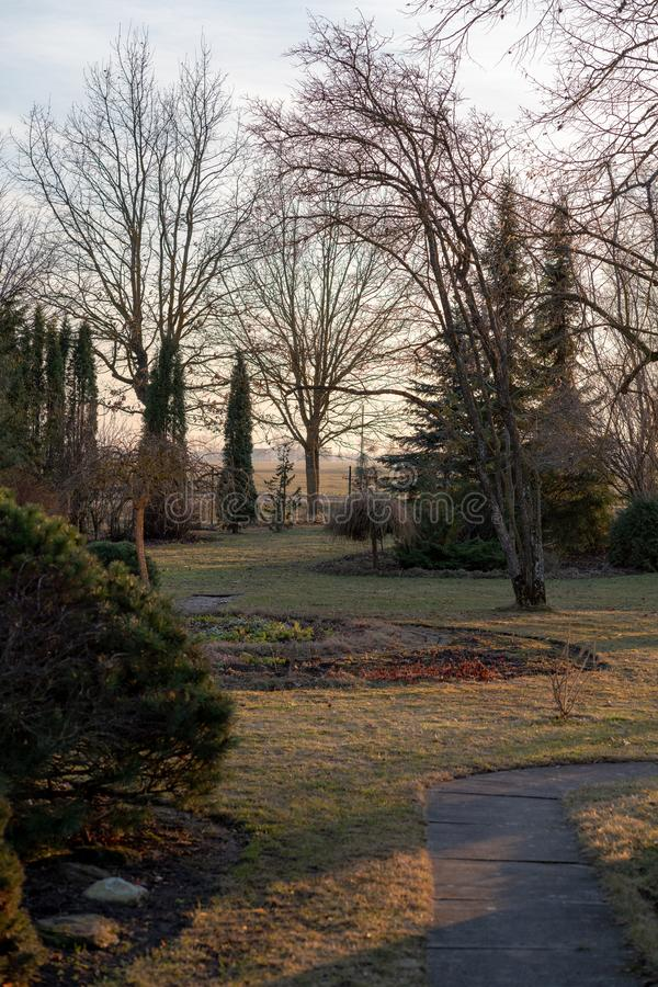 View of the garden in spring. Late afternoon when there is sunset; there is a circle of ornamental plants and a further part of the park stock image