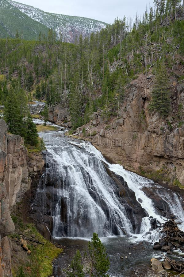 View of Gibbon Falls in Yellowstone National Park stock images
