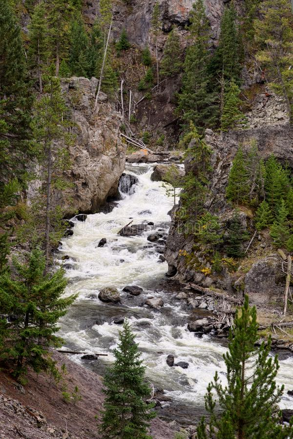 View of the Gibbon River in Yellowstone National Park stock photography