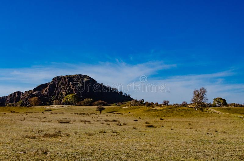 View of the grassland in deep autumn stock photography