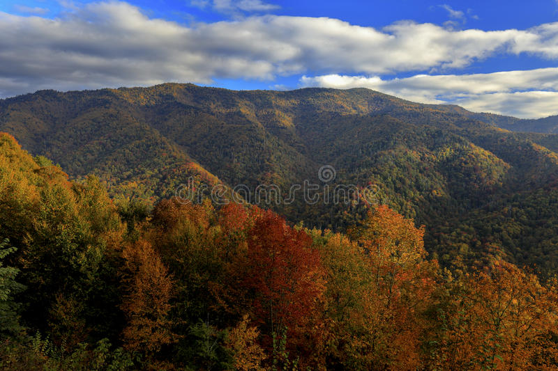 View from Great Smoky Mountains National Park. Autumn view from Newfound Gap Road in Great Smoky Mountains National Park, North Carolina royalty free stock photos