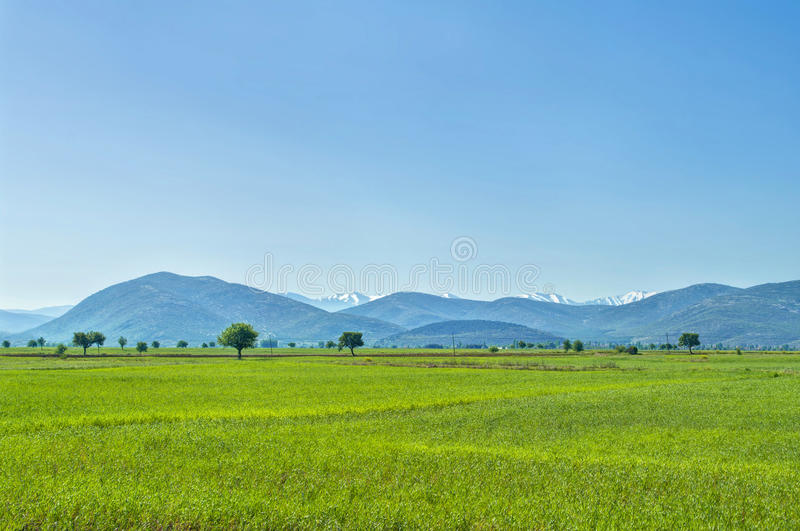 View of green field in mountains stock images