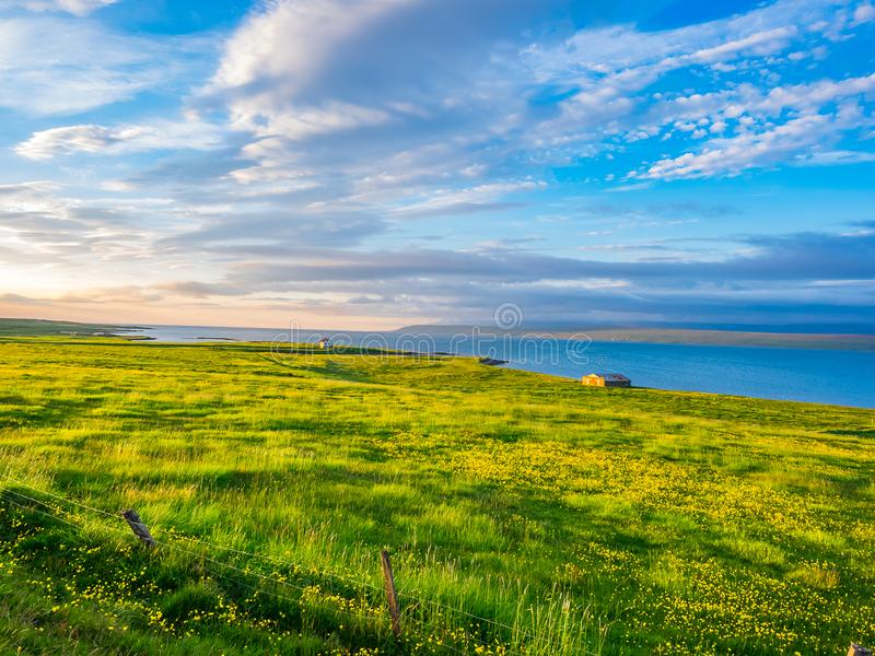 View of green field with yellow flowers and houses on the seaside stock photos
