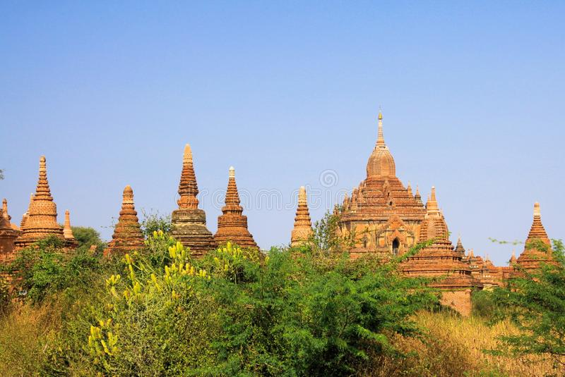 View green grass and bush on group of towers of ancient buddhist brick stone stupas spread across the plain of Bagan. Myanmar stock photos
