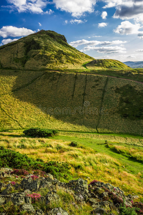 View of green hills in summer royalty free stock photography