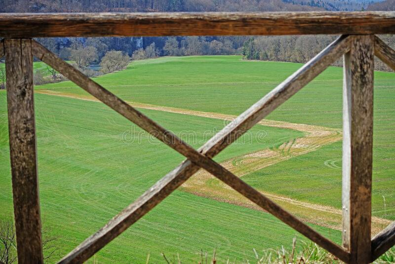 View on green neadow through a fence stock photos