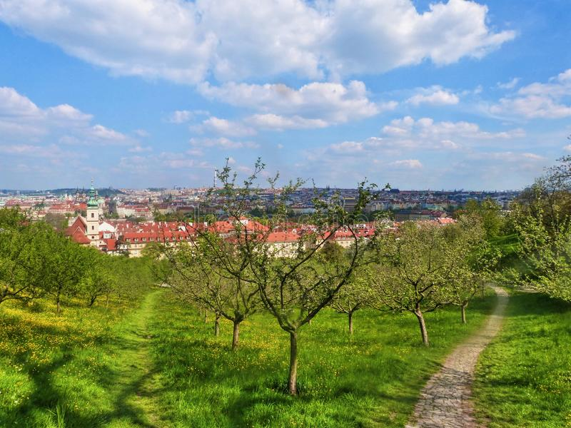 View of the green Prague, Czech Republic royalty free stock photography
