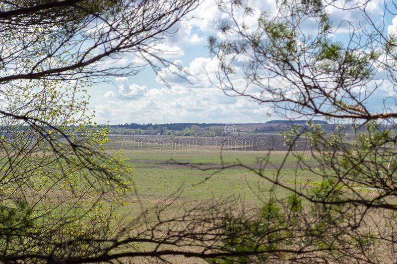 View of the spring green plain and the plowed field through the branches of trees. View of the green spring plain and the plowed field through the branches of stock photography