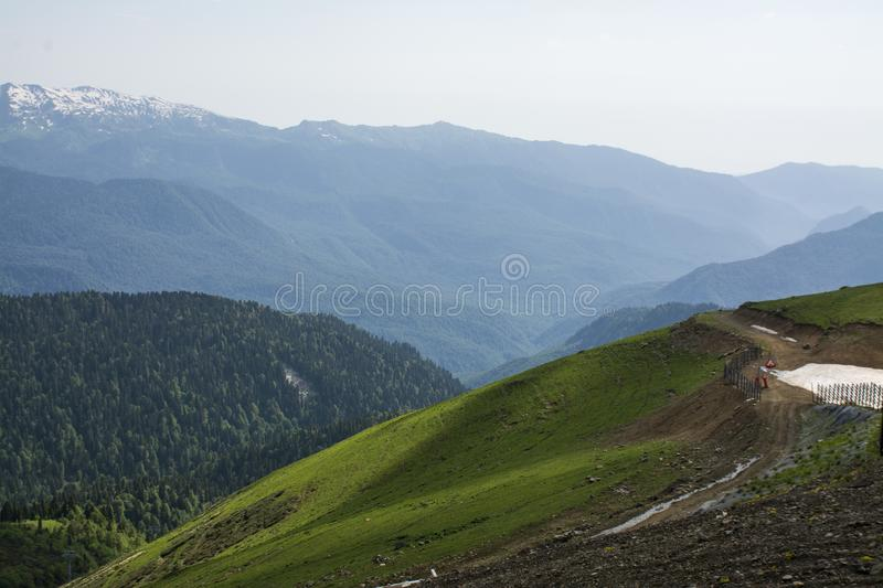 View of a green valley in the Alps. Close up background royalty free stock image