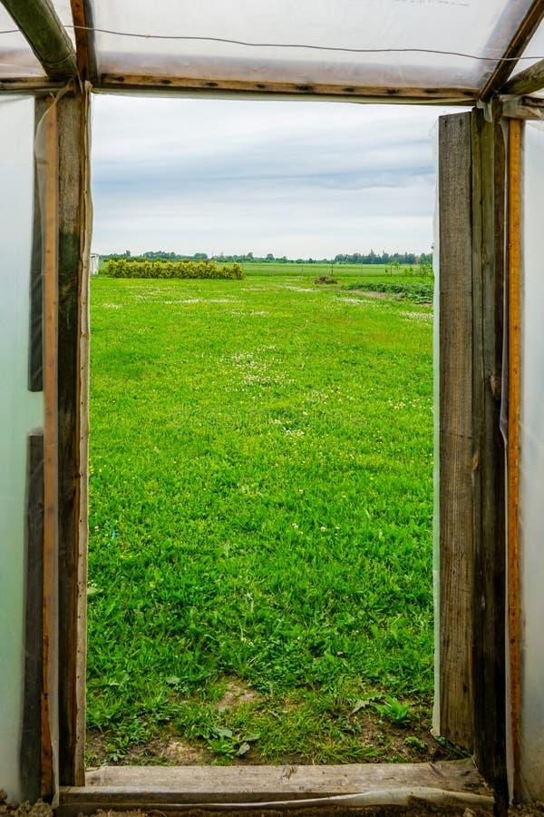View through a greenhouse door on a green meadow stock photos