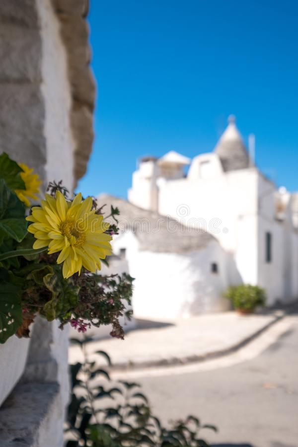 View of group of traditional trulli houses in the Aia Piccola residential area of Alberobello in the Itria Valley, Puglia Italy. View of group of traditional royalty free stock image