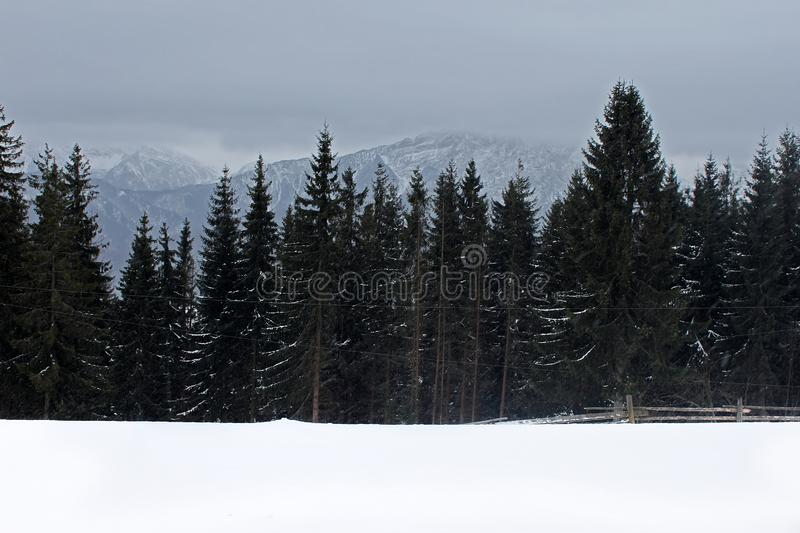 View from Gubalowka 1,126 m on Tatry mountains in snowing day, Zakopane stock photo