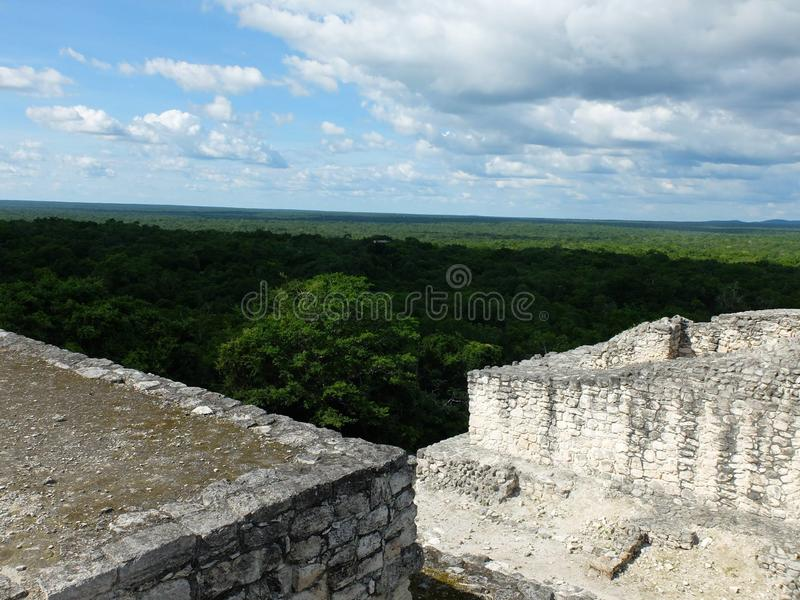 Calakmul on top of temple 5 stock photography