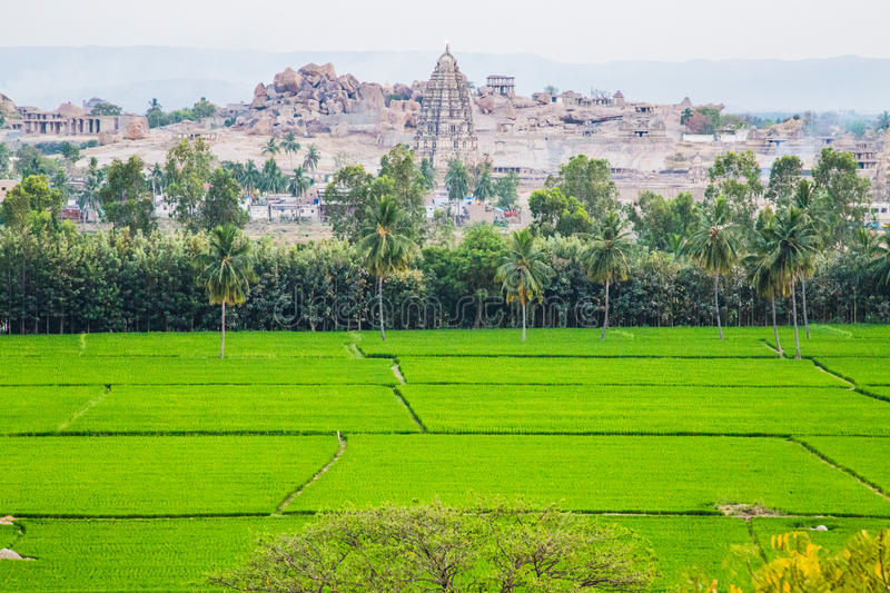 View of Hampi with rice fields, India stock images