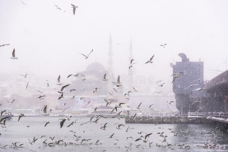 View of heaviest snowfall in Istanbul,Turkey. Heaviest snowfall in Istanbul.Galata bridge and New Mosque is an Ottoman imperial mosque located in the Eminön stock image