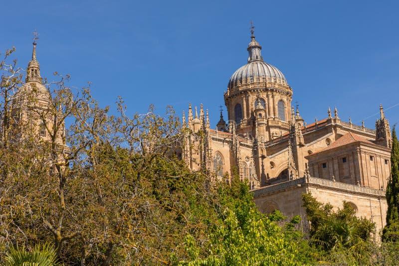 Salamanca Cathedral, Spain royalty free stock photos