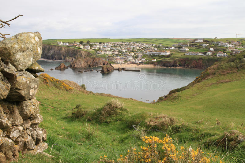 View of Hope Cove, Devon from the Bolt tail headland. Stone wall and yellow heather in the foreground. Hope cove bay in background royalty free stock photo