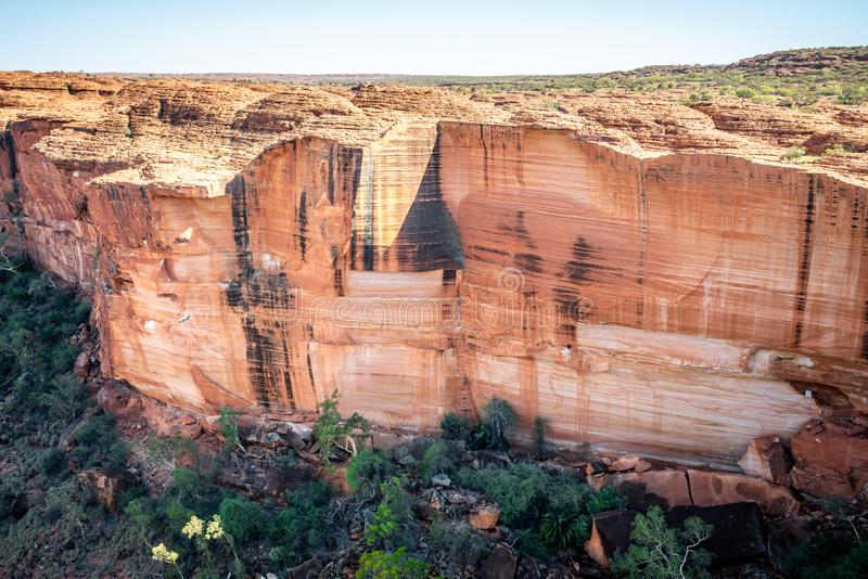 View of the huge cliffs walls of Kings Canyon in NT outback Australia. View of the huge cliffs walls of Kings Canyon in Northern Territory outback Australia royalty free stock photo