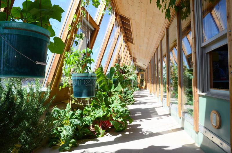 Vegetable garden inside an Earthship sustainable house near Taos in New Mexico, USA. View of the indoor vegetable garden inside an Earthship sustainable house royalty free stock photos