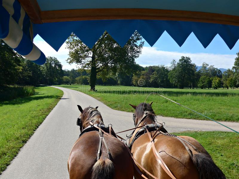 View from inside of a horse-drawn carriage stock photos