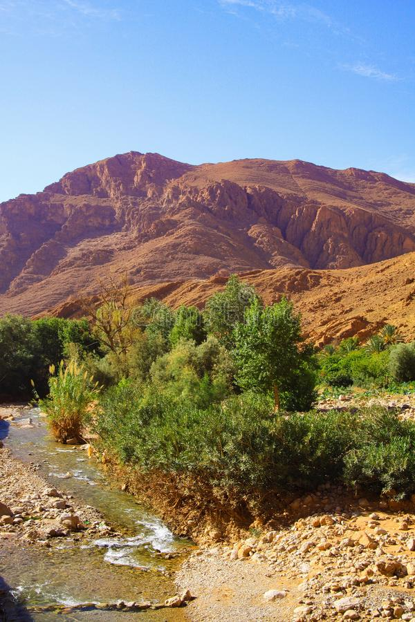 View on isolated small creek green oasis valley in desert of limestone and clay mountains against blue sky. Todhga river Todra valley near Tinghir - Morocco stock photo
