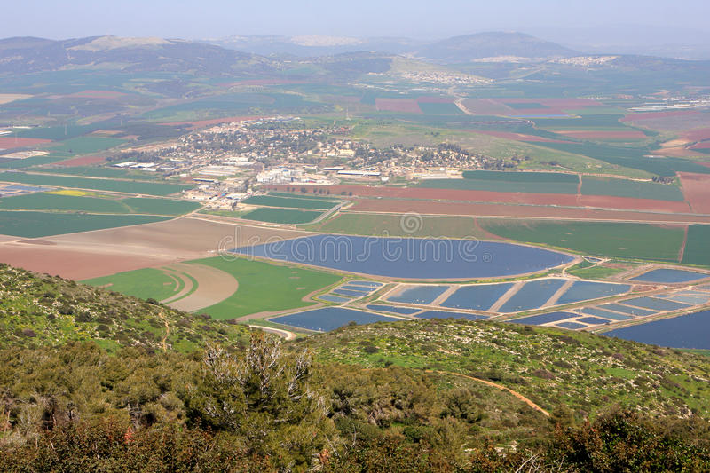 Download View on Israel valley stock image. Image of natural, plant - 87296089