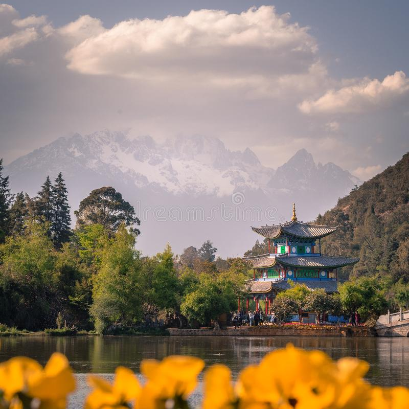 View of the Jade Dragon Snow Mountain and the Black Dragon Pool, Lijiang, Yunnan province, China. The Suocui Bridge with yellow fl royalty free stock images