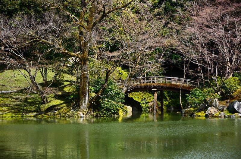 Japanese garden and wooden bridge, spring in Japan. royalty free stock photos