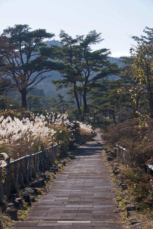 View of the Japanese geothermal spa stock photography