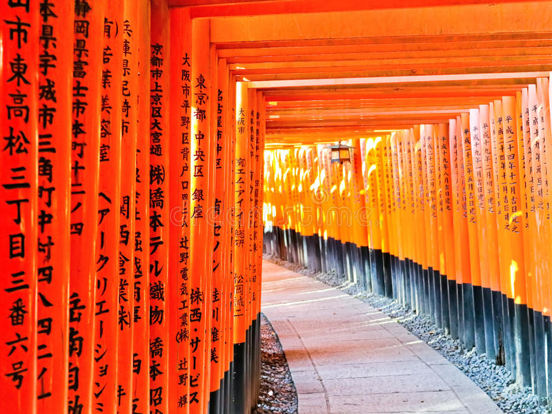 View of the Japanese torii path in Kyoto, Japan. royalty free stock images