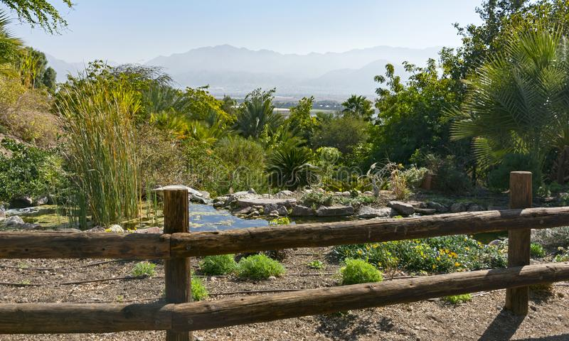 View of Jordan from Eilat Botanical Garden. A view of the Moav Mountains in Jordan from the exotic botanical garden in eilat israel royalty free stock photos