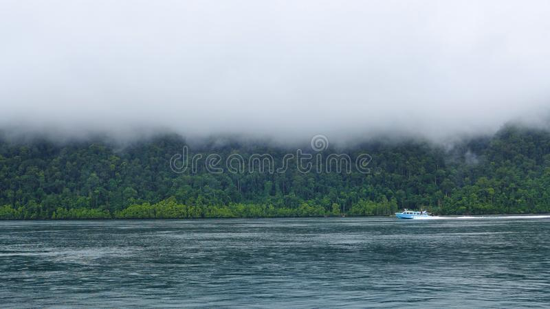 Mayalibit bay in Waigeo. Raja Ampat. View of the Jungle on the Mayalibit bay in Waigeo. Raja Ampat, West Papua, Indonesia royalty free stock images