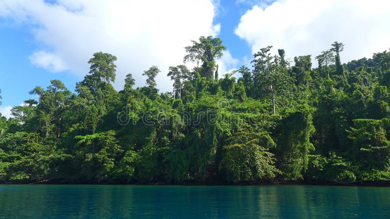 Mayalibit bay in Waigeo. Raja Ampat. View of the Jungle on the Mayalibit bay in Waigeo. Raja Ampat, West Papua, Indonesia royalty free stock photos
