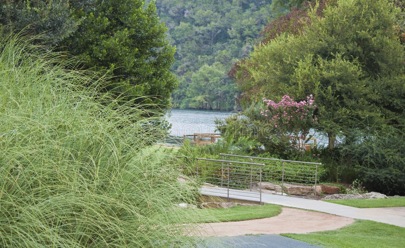 View of Lake Austin. View down a path and through folliage of Lake Austin with hills in the background stock photos