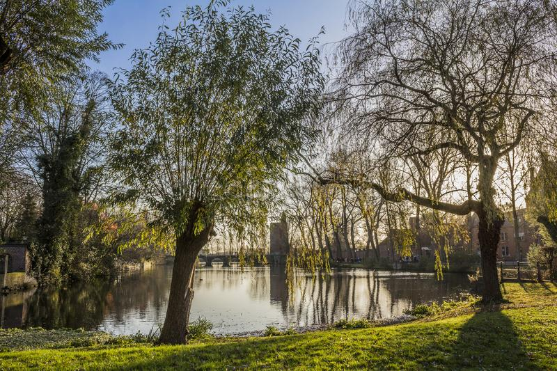 View of a lake with reflections in the water, trees and a bridge in the background. Beautiful view of a lake with reflections in the water, trees and a bridge in royalty free stock photography