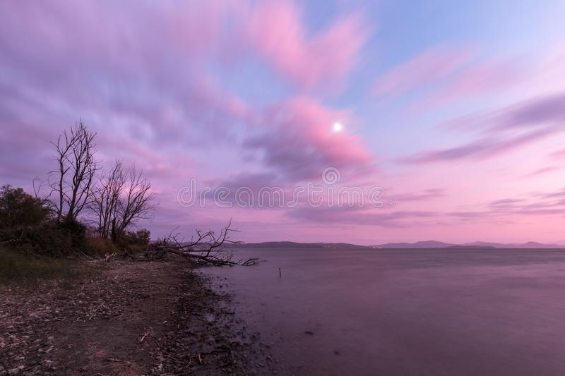 View of a lake shore at sunset, with plants, trees,beautiful pu stock photos