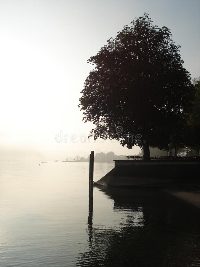 View on a lake royalty free stock image
