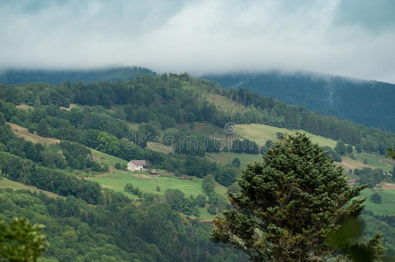 Landscape with Mountains and Forest. View of Landscape with Mountains and Forest royalty free stock photography